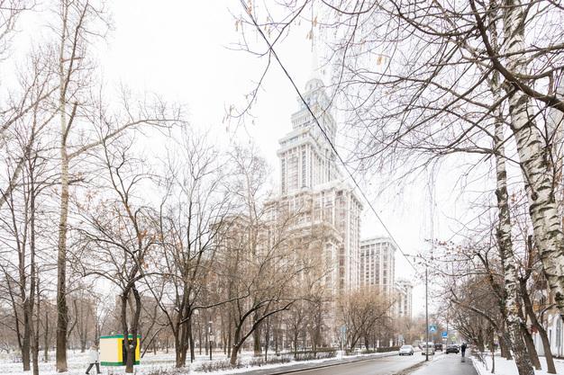 Фасад в квартире на Чапаевский пер, д. 3